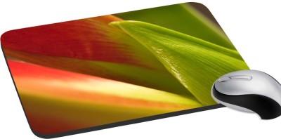 meSleep Nature PD-31-018 Mousepad(Multicolor)