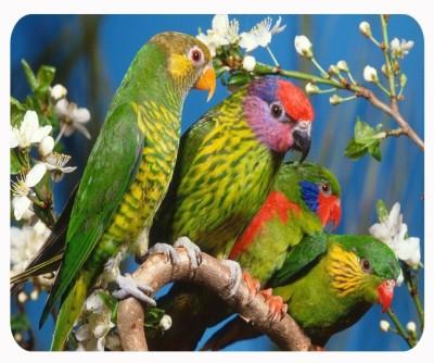 RUKMINI LOVE BIRDS Mousepad