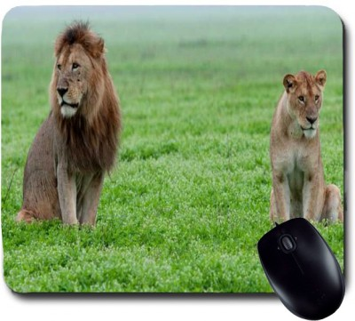 Awwsme Lion And Lioness Waiting For Food Mousepad