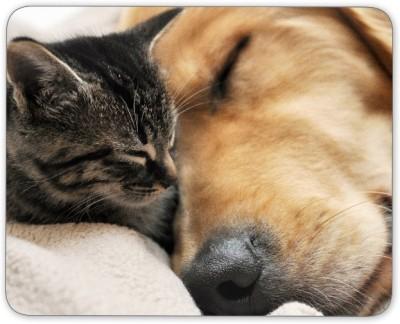 Digiclan Digiclan sleeping cat n dog Mouse pad-SZMP084 Mousepad