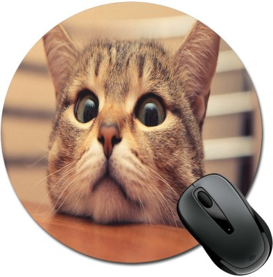 SBBT Hungry Brown Cat Mousepad(Multicolor)