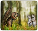 Digiclan Photographer Squirrel Mousepad ...