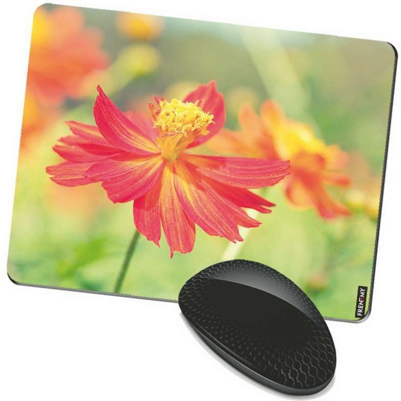 FRENEMY MPAD8251 Mousepad(Multicolor)