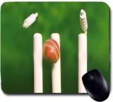 Awwsme A Ball Hitting The Cricket In The...