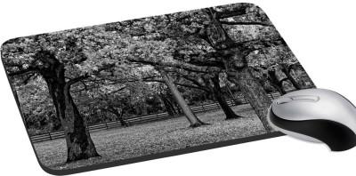 meSleep Nature PD-28-125 Mousepad(Multicolor)