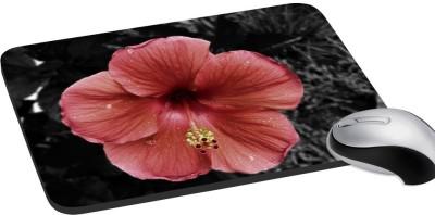meSleep Nature PD-31-047 Mousepad(Multicolor)