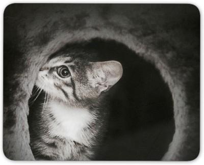 Digiclan Digiclan black n white shy cat Mouse Pad-SZMP082 Mousepad