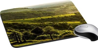 meSleep Nature PD-31-216 Mousepad(Multicolor)