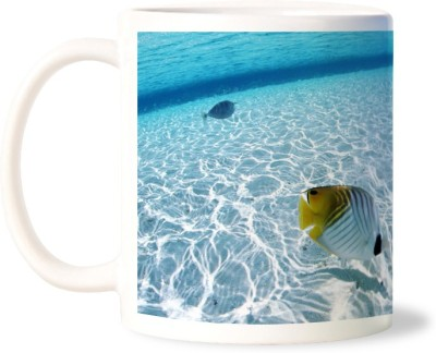 Lovely Collection Sea Fishes Ceramic Mug