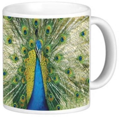 Rikki Knight LLC Knight Photo Quality Ceramic Coffee , 11 oz, Peacock Ceramic Mug