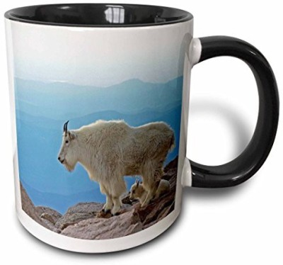 3dRose Colorado, Mt Evans. Mountain Goats, Rocky Mtns Us06 Bja0030 Jaynes Gallery Two Tone Black , 11 oz, Black/White Ceramic Mug