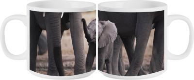 RahKri RKMS-351 Ceramic Mug
