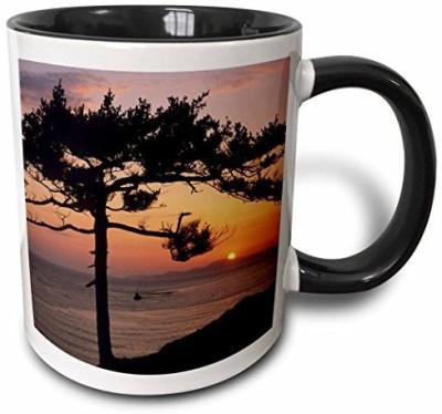 3dRose Washington, San Juan Islands, Fidalgo Island Us48 Ksc0014 Kevin Schafer Two Tone Black , 11 oz, Black/White Ceramic Mug