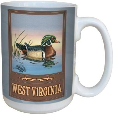 Tree-Free Greetings Greetings lm43016 Scenic West Virginia Wood Duck by David Bartholet Ceramic  with Full-Sized Handle, 15-Ounce, Multicolored Ceramic Mug