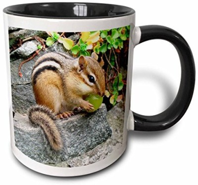 3dRose mug_3109_4 Chipmunk Two Tone Black , 11 oz, Black/White Ceramic Mug