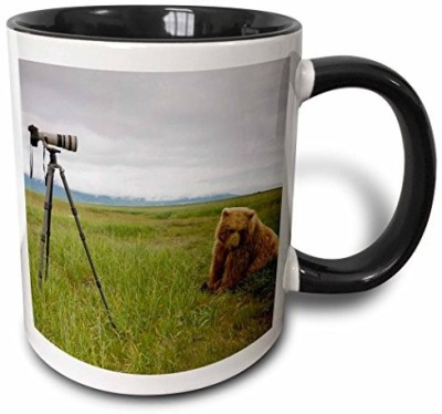 3dRose Alaska, Katmai Np, Brown Bear, Hallo Bay Us02 Pso0801 Paul Souders Two Tone Black , 11 oz, Black/White Ceramic Mug