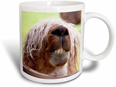 3dRose Peru. Suri Alpaca Wildlife, Awana Kancha Sa17 Kwi0101 Kymri Wilt Ceramic, 11 oz, White Ceramic Mug(60 ml)