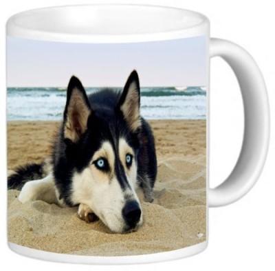 Rikki Knight LLC Knight Photo Quality Ceramic Coffee , 11 oz, Siberian Husky on Beach Ceramic Mug