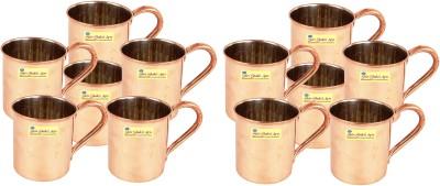 SSA Set of 12 C/N Plane Copper Mug