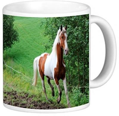 Rikki Knight LLC Knight Photo Quality Ceramic Coffee , 11 oz, Horse Galloping in Field Ceramic Mug