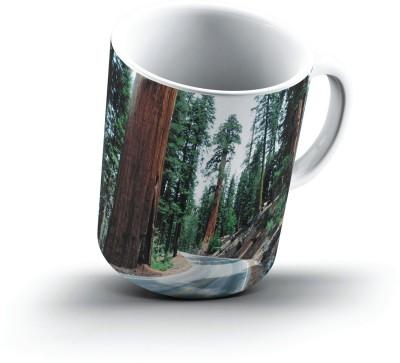 Ucard Redwood Road Sequoia National Park2634 Bone China, Ceramic, Porcelain Mug