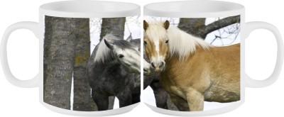 RahKri RKMS-352 Ceramic Mug