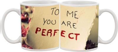 Goonlineshop You r Perfect Ceramic Mug