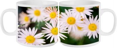 RahKri RKMS-1006 Ceramic Mug