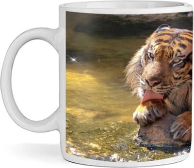 SBBT Tiger in Sunset Ceramic Mug