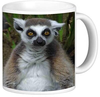 Rikki Knight LLC Knight Photo Quality Ceramic Coffee , 11 oz, Lemur Ceramic Mug