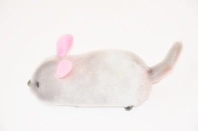 Ruppiee Shoppiee Snify Mouse Grey