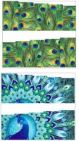 Jenna Manicure Water Transfer Nail Art Decals Stickers- Sapphire Series NR-322(White) best price on Flipkart @ Rs. 125