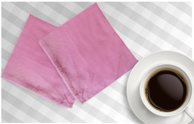Airwill Multicolor Set of 2 Napkins
