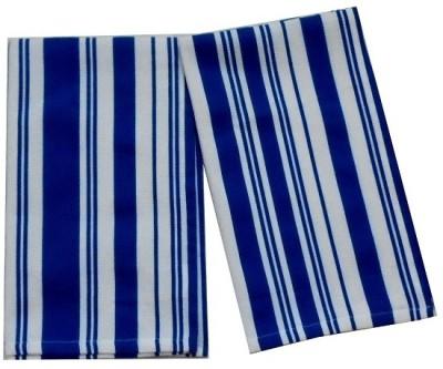 Tidy Blue Set of 2 Napkins