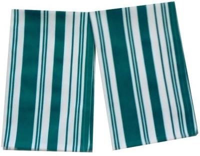 Tidy Green Set of 2 Napkins