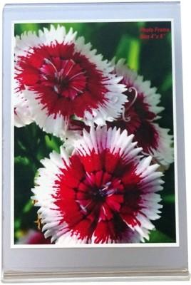 Photo Frame Acrylic Photo Frame