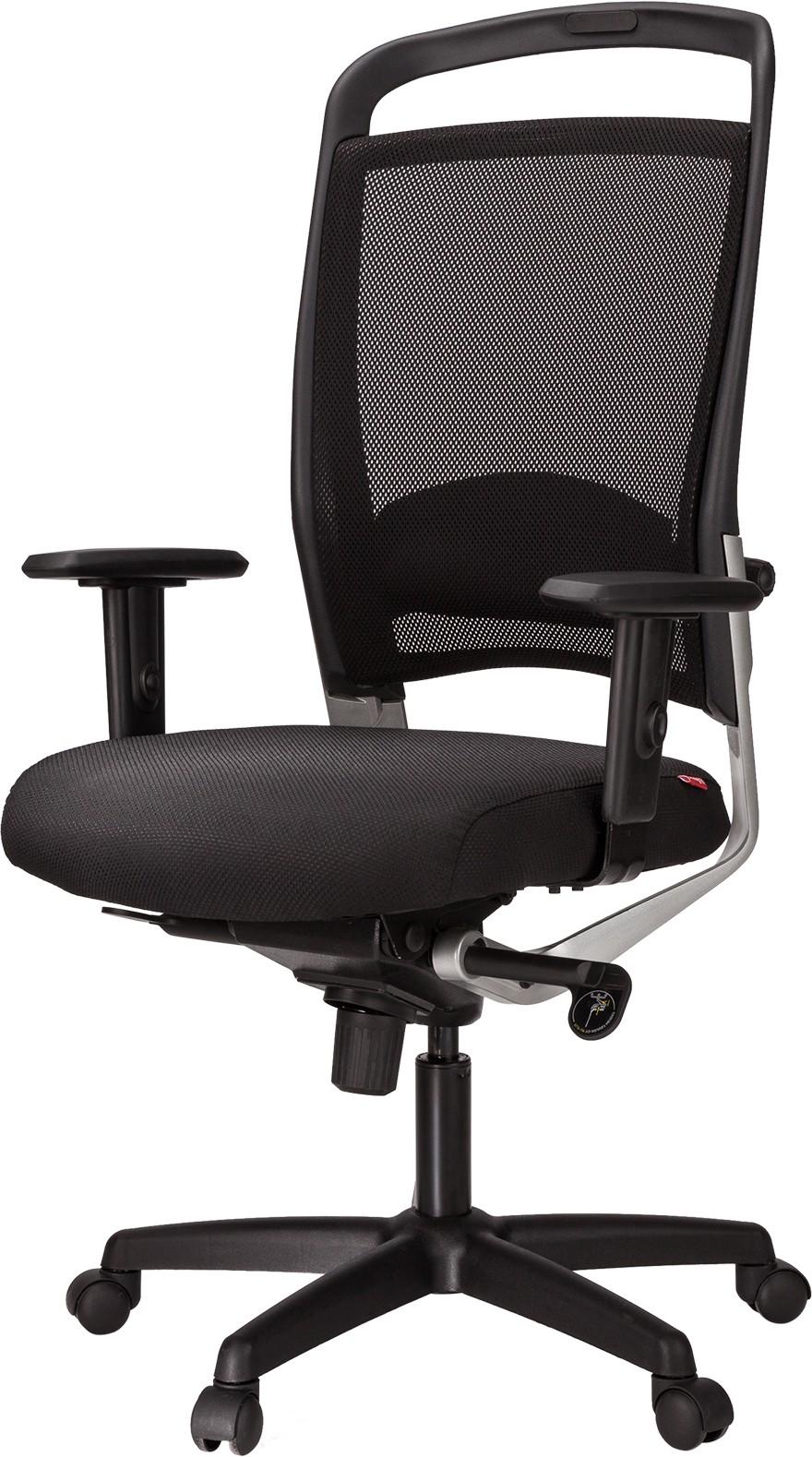 View Ergoline ARIBA MB Plastic Office Chair(Black) Furniture (Ergoline)