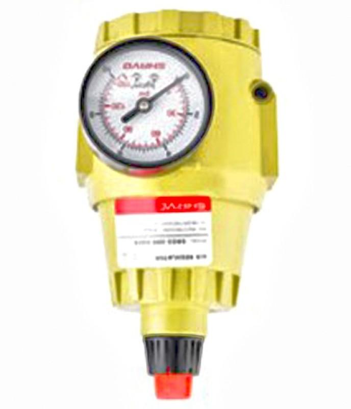 Haag SNR-02 Pneumatic Dispenser(1 L Pack of 1)