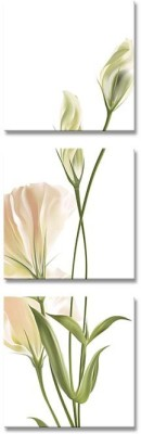 Painting Mantra Abloom Flowers Set Canvas Painting