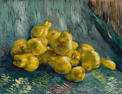 Ocher Art 26x19 INCHES, Vincent van Gogh - Still Life with Quince Pears Canvas Painting