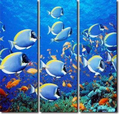 2 O Clock Designer Multicolor Aquatic Wall Hanging Canvas Painting