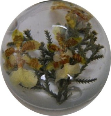 Panzora Floral Resin Paper Weights  with Clear