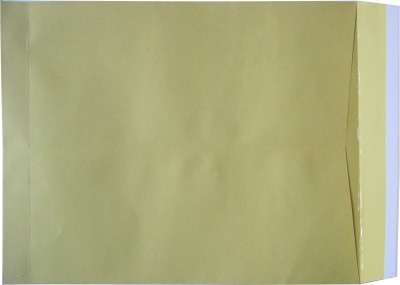 Sagar Mahal Envelope Paper