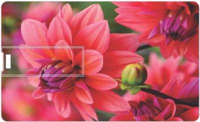 Printland Season flower PC160042 16 GB Pen Drive