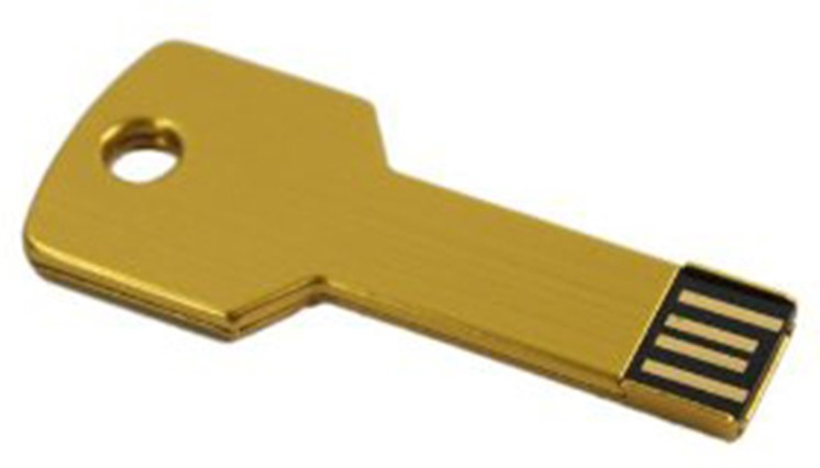 View The Fappy Store Golden Key 16 GB Pen Drive(Gold) Price Online(The Fappy Store)