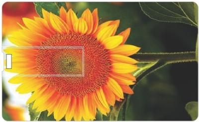 Printland Sun Flowers PC160028 16 GB Pen Drive