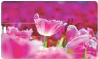 Printland 8GB Pink 8 GB Pen Dr