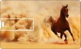 Printland Credit card Running Horse 8 GB...