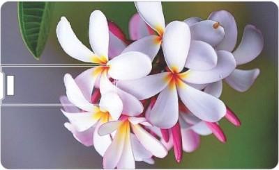 Printland Flowers PC84851 8 GB Pen Drive