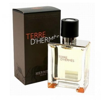 Hermes Terre D, Hermes EDT  -  50 ml